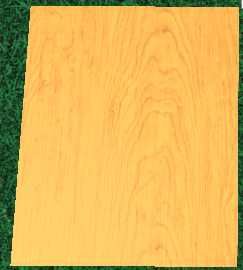 File:Swamp plank.png