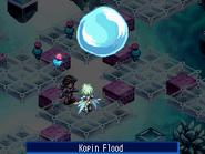 Kopinflood-2