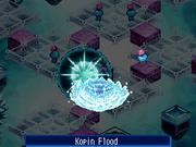 Kopinflood