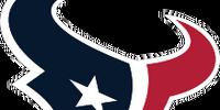 Houston Texans (2013)