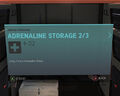 Adrenaline Storage 2-3.jpg
