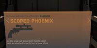 Scoped Phoenix