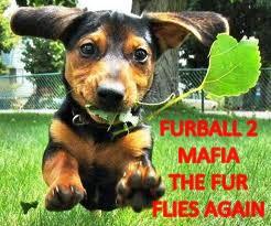Furball 2 mafia