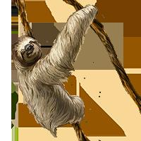 Huge item sloth 01
