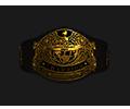 Mw tournament Belt heavy