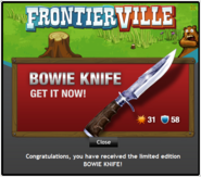 Bowie Knife recieved