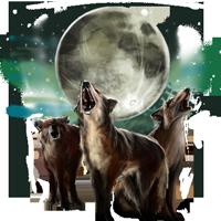 Huge item wolfpackmoon 01
