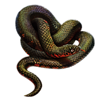 Huge item mudsnake 01