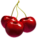 Standard 75x75 collect cherries 01