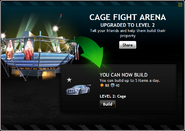 CageFightArenaLevel2