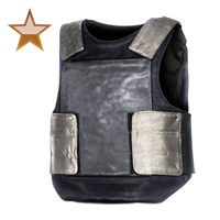 Huge item bulletproofvest bronze 01