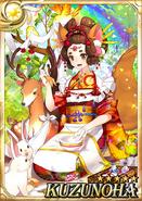 Kuzunoha F3