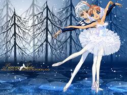 Princess tutu anime wallpaper-normal