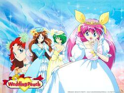 Wedding Peach Brides