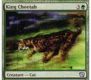 Ghepardo Reale (King Cheetah)