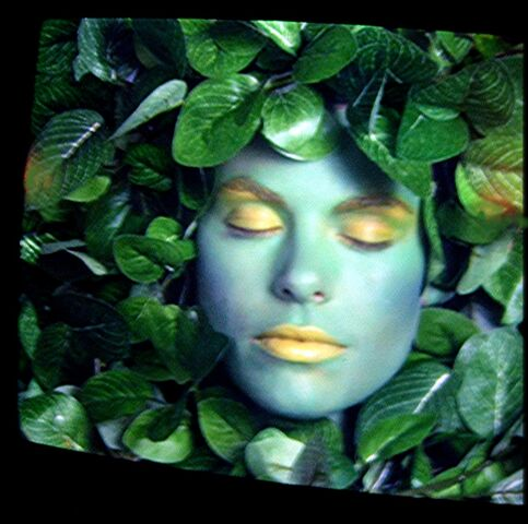 File:MagicQuest green leaf lady.jpg