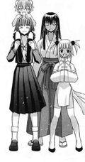 Mahou-sensei-negima-336995