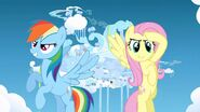 Rainbow dash and fluttershy