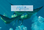 Wikia-Visualization-Main,makomermaids