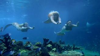 Ondina Sirena Mimmi Diving
