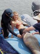 Mako Mermaids Set 2