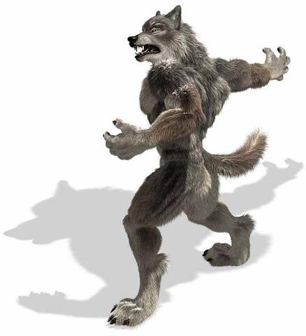 File:Werewolf-3d.jpg