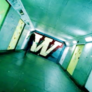 ...W is for Wonderland.