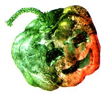 File:PumpkinBomb.png