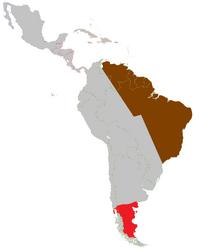 Latin America-Turn 2