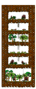 Map Deep Jungle