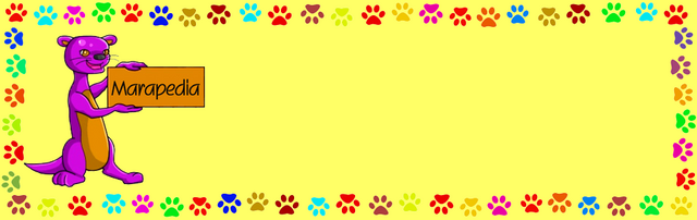 File:Marapedia Banner.png