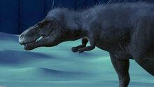 MotD Gorgosaurus