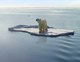 File:Arctic ocean-melting ice.jpg