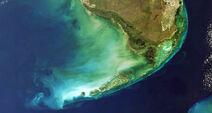 Floridas-barreir-Reef