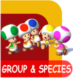 Mario group & species
