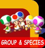 Mario group & species