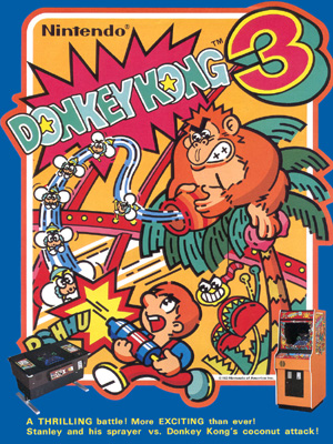 Dk3 arcade