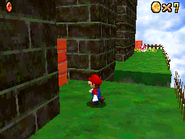 Switch Star of the Fortress - Mission Gameplay - Super Mario 64 DS