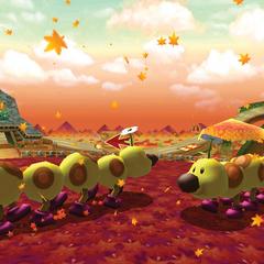 Wii Maple Treeway! Won to Wii Mario Circuit