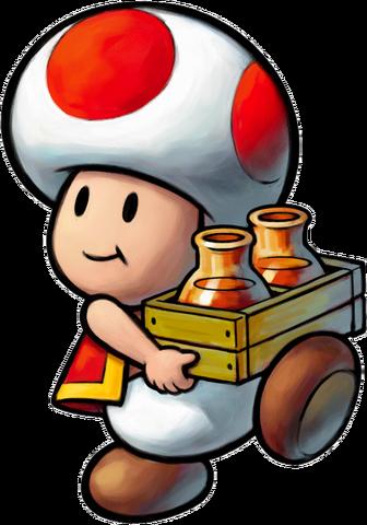 File:ToadRPG3.png