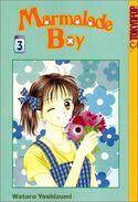 Marmalade-Boy-vol-3
