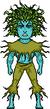 Seaweed RichB