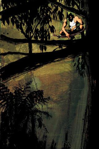 File:Green Arrow Year One Vol 1 2 Textless.jpg