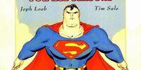 Superman for All Seasons Vol 1