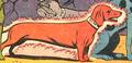 Hot Dog 001