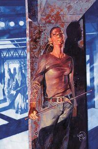 Y The Last Man Vol 1 29 Textless