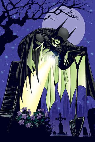 File:Batgirl Cassandra Cain 0041.jpg