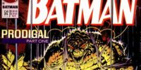 Batman: Prodigal/Gallery