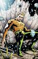 Aquaman 0029