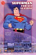 Superman for All Seasons 4